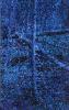 BLÅ SKOG/BLUE FOREST