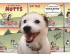 MUTTS TREASURY - EVERYDAY MUTTS