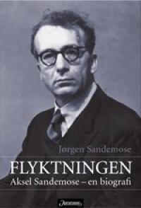FLYKTNINGEN