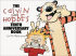 CALVIN AND HOBBES TREASURY 05 (SC) - TENTH ANNIVERSARY BOOK