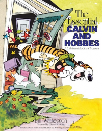 CALVIN AND HOBBES TREASURY 01 (SC) - THE ESSENTIAL CALVIN AND HOBBES