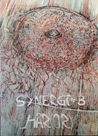 SYNERGI NR. 03 - HÅR(OR)