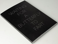 WAITING FOR A BUTTERFLT TO FART