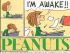 THE COMPLETE PEANUTS - 1971 TO 1972 (SC)