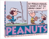 THE COMPLETE PEANUTS - 1977 TO 1978 (HFT)