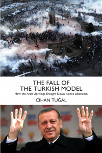 THE FALL OF THE TURKISH MODEL