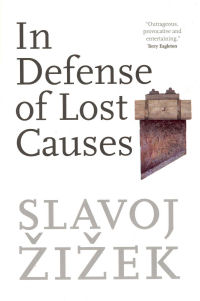 IN DEFENSE OF LOST CAUSES (PB)