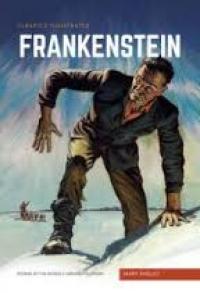 CLASSICS ILLUSTRATED HB - FRANKENSTEIN