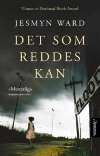 DET SOM REDDES KAN