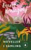 NOVELLER I SAMLING (1924-1938) HEMINGWAY